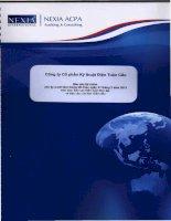 Báo cáo tài chính công ty mẹ năm 2012 (đã kiểm toán) - Công ty cổ phần Kỹ thuật điện Toàn Cầu