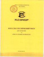 Báo cáo tài chính hợp nhất quý 2 năm 2012 - Công ty cổ phần Tập đoàn FLC