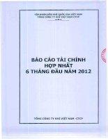 Báo cáo tài chính hợp nhất quý 2 năm 2012 - Tổng Công ty Khí Việt Nam-CTCP