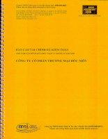 Báo cáo tài chính công ty mẹ năm 2009 (đã kiểm toán) - Công ty Cổ phần Thương mại Hóc Môn