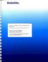 Báo cáo tài chính quý 2 năm 2015 (đã soát xét) - Công ty cổ phần Cơ khí và Khoáng sản Hà Giang