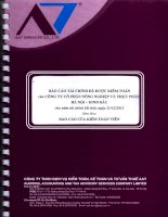 Báo cáo tài chính năm 2013 (đã kiểm toán) - Công ty Cổ phần Nông nghiệp và Thực phẩm Hà Nội - Kinh Bắc