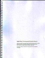 Báo cáo tài chính hợp nhất năm 2012 (đã kiểm toán) - Ngân hàng Thương mại cổ phần Đông Á