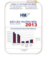 Báo cáo thường niên năm 2013 - Công ty Cổ phần Hải Minh