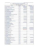 Báo cáo tài chính hợp nhất quý 2 năm 2011 - Công ty Cổ phần Thủy điện Nậm Mu
