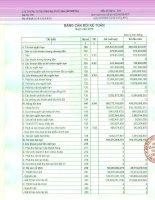 Báo cáo tài chính quý 2 năm 2013 - Công ty Cổ phần Đầu tư Thương mại Thủy Sản