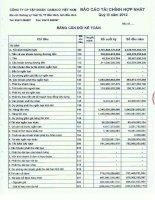 Báo cáo tài chính hợp nhất quý 3 năm 2012 - Công ty Cổ phần Tập đoàn Dabaco Việt Nam