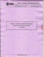 Báo cáo tài chính hợp nhất quý 4 năm 2010 - Công ty Cổ phần Tập đoàn Nhựa Đông Á