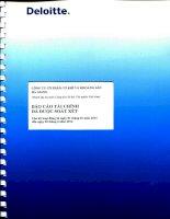 Báo cáo tài chính quý 2 năm 2014 (đã soát xét) - Công ty cổ phần Cơ khí và Khoáng sản Hà Giang