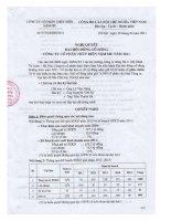 Nghị quyết đại hội cổ đông ngày 28-04-2011 - Công ty Cổ phần Thủy điện Nậm Mu