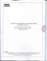 Báo cáo tài chính năm 2013 (đã kiểm toán) - Công ty Cổ phần Đầu tư và Phát triển Đa Quốc Gia I.D.I
