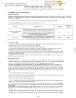Báo cáo tài chính công ty mẹ quý 1 năm 2013 - Công ty cổ phần Kỹ thuật điện Toàn Cầu