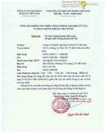 Báo cáo tài chính hợp nhất quý 2 năm 2014 (đã soát xét) - Công ty Cổ phần Tập đoàn Dabaco Việt Nam