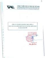 Báo cáo tài chính hợp nhất năm 2008 (đã kiểm toán) - Công ty Cổ phần Tập đoàn Nhựa Đông Á
