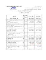 Báo cáo tài chính quý 1 năm 2008 - Công ty Cổ phần Dược phẩm Cửu Long