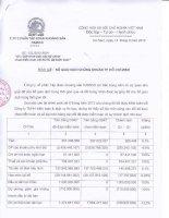 Báo cáo tài chính quý 2 năm 2012 (đã soát xét) - Công ty Cổ phần Đầu tư và Phát triển KSH