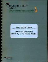 Báo cáo tài chính công ty mẹ năm 2010 (đã kiểm toán) - Công ty Cổ phần Dịch vụ Ô tô Hàng Xanh