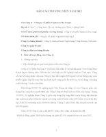 Báo cáo thường niên năm 2012 - Công ty Cổ phần Viglacera Hạ Long I