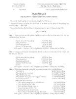 Nghị quyết Đại hội cổ đông thường niên năm 2010 - Công ty Cổ phần Hóa chất Việt Trì