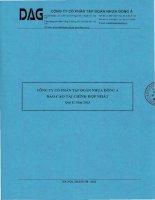 Báo cáo tài chính hợp nhất quý 2 năm 2013 - Công ty Cổ phần Tập đoàn Nhựa Đông Á