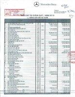 Báo cáo tài chính công ty mẹ quý 1 năm 2010 - Công ty Cổ phần Dịch vụ Ô tô Hàng Xanh