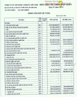 Báo cáo tài chính hợp nhất quý 4 năm 2013 - Công ty Cổ phần Tập đoàn Dabaco Việt Nam