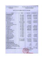 Báo cáo tài chính năm 2007 - Công ty Cổ phần Dược - Vật tư Y tế Đăk Lăk