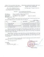 Báo cáo tài chính quý 2 năm 2014 - Công ty Cổ phần Xi măng Vicem Hải Vân