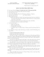 Báo cáo thường niên năm 2014 - CTCP Du lịch và Thương mại DIC