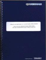 Báo cáo tài chính năm 2013 (đã kiểm toán) - Công ty Cổ phần Đầu tư và Xây dựng Công nghiệp