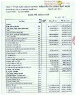 Báo cáo tài chính hợp nhất quý 2 năm 2014 - Công ty Cổ phần Tập đoàn Dabaco Việt Nam