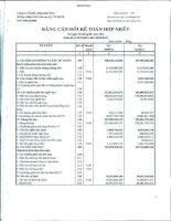 Báo cáo tài chính hợp nhất quý 4 năm 2012 - Công ty Cổ phần Nông dược H.A.I