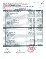 Báo cáo tài chính hợp nhất quý 4 năm 2009 - Công ty Cổ phần Dịch vụ Ô tô Hàng Xanh