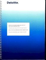 Báo cáo tài chính năm 2015 (đã kiểm toán) - Công ty Cổ phần Khoáng sản và Xây dựng Bình Dương