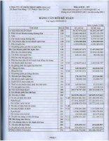 Báo cáo tài chính quý 2 năm 2011 -  Công ty Cổ phần Thủy điện Gia Lai