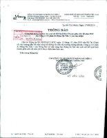 Báo cáo KQKD hợp nhất quý 2 năm 2010 (đã soát xét) - Công ty Cổ phần Xi Măng Hà Tiên 1