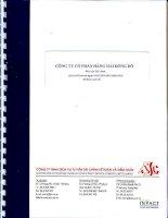 Báo cáo tài chính quý 2 năm 2010 (đã soát xét) - Công ty Cổ phần Hàng hải Đông Đô