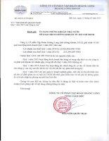 Báo cáo tài chính công ty mẹ quý 1 năm 2015 - Công ty Cổ phần Tập đoàn Hoàng Long