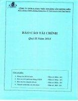 Báo cáo tài chính công ty mẹ quý 2 năm 2014 - Công ty cổ phần Thương mại và Khai thác Khoáng sản Dương Hiếu