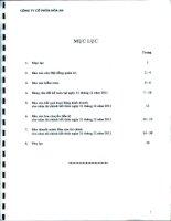 Báo cáo tài chính năm 2011 (đã kiểm toán) - Công ty Cổ phần Hóa An