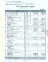 Báo cáo tài chính hợp nhất quý 2 năm 2012 - Công ty Cổ phần Dịch vụ Ô tô Hàng Xanh