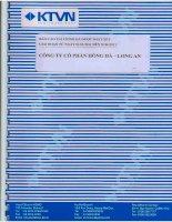 Báo cáo tài chính quý 2 năm 2011 (đã soát xét) - Công ty Cổ phần Hồng Hà Long An