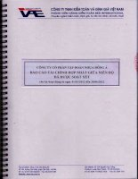 Báo cáo tài chính hợp nhất quý 2 năm 2012 (đã soát xét) - Công ty Cổ phần Tập đoàn Nhựa Đông Á
