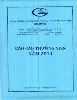 Báo cáo thường niên năm 2014 - Công ty Cổ phần Sản xuất Kinh doanh Xuất nhập khẩu Bình Thạnh