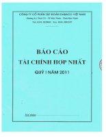 Báo cáo tài chính hợp nhất quý 1 năm 2011 - Công ty Cổ phần Tập đoàn Dabaco Việt Nam