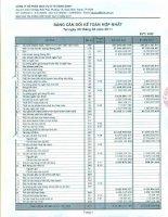 Báo cáo tài chính hợp nhất quý 2 năm 2011 - Công ty Cổ phần Dịch vụ Ô tô Hàng Xanh
