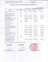 Báo cáo KQKD quý 4 năm 2012 - Công ty Cổ phần Đầu tư Thương mại Bất động sản An Dương Thảo Điền