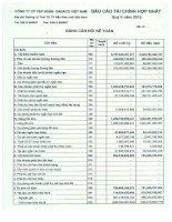 Báo cáo tài chính hợp nhất quý 2 năm 2012 - Công ty Cổ phần Tập đoàn Dabaco Việt Nam