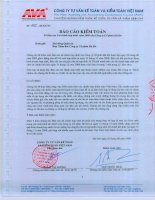 Báo cáo tài chính năm 2008 (đã kiểm toán) - Công ty Cổ phần Tập đoàn Hà Đô