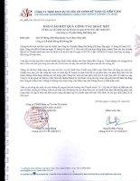 Báo cáo KQKD hợp nhất quý 2 năm 2011 (đã soát xét) - Công ty Cổ phần Hàng hải Đông Đô